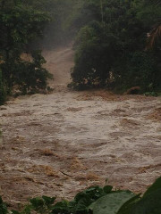Swollen streams in Mauritius