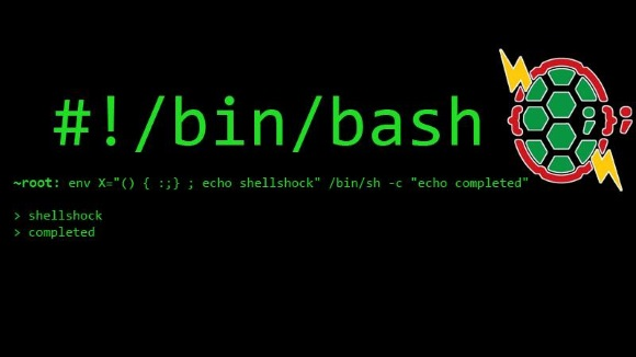 MSCC meetup: Discussion about the bash shellshock vulnerability and practical advice to secure your systems.